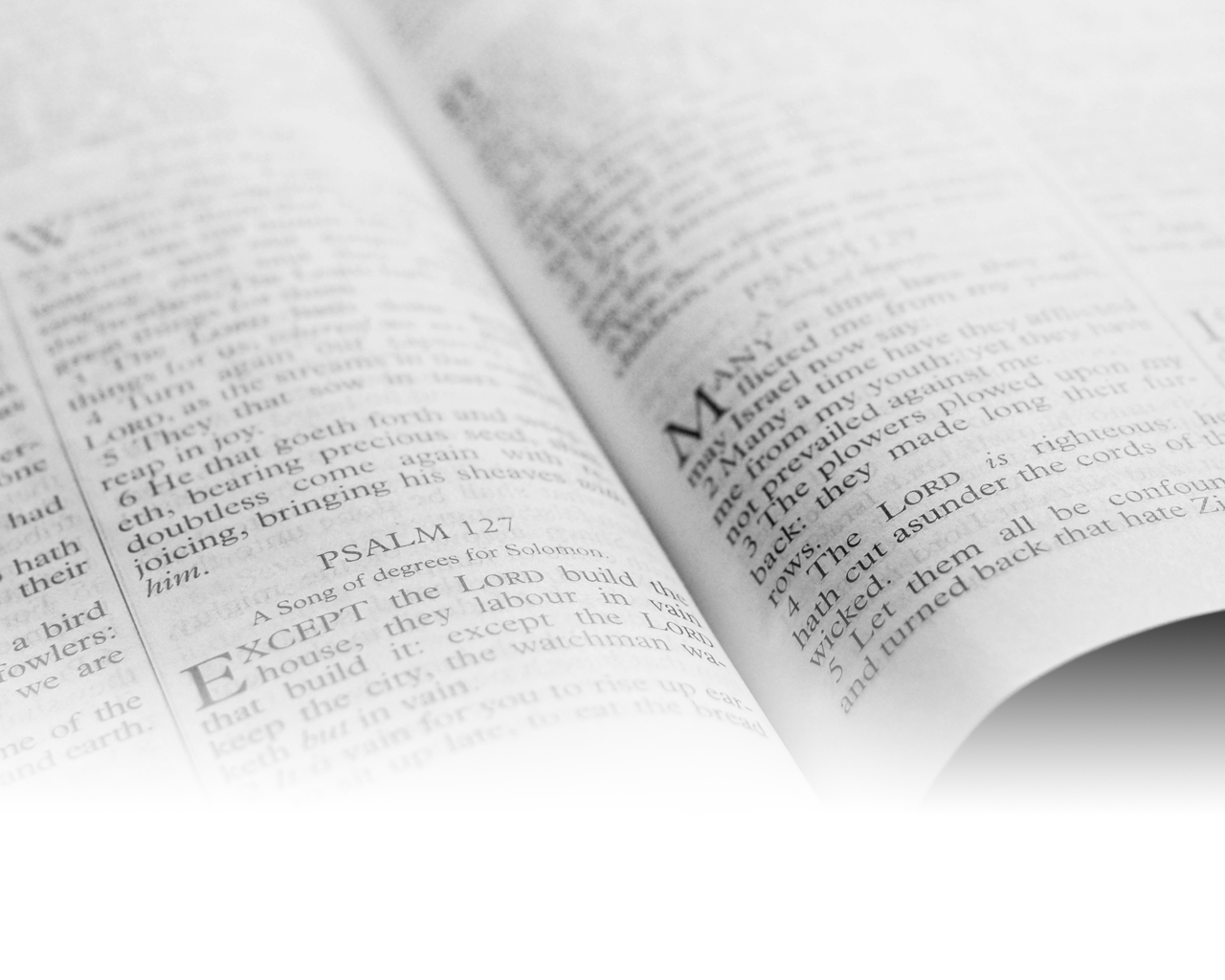 Consider the Bible - Blur